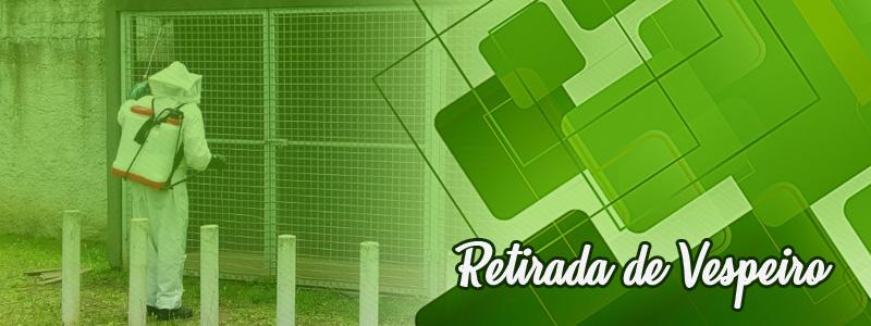 Retirada de Vespeiros  em Curitiba