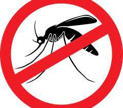 Saúde passa a distribuir larvicida biológico para o controle das arboviroses